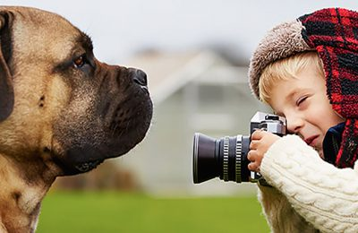 Como Tirar Lindas Fotos Do Seu Mascote